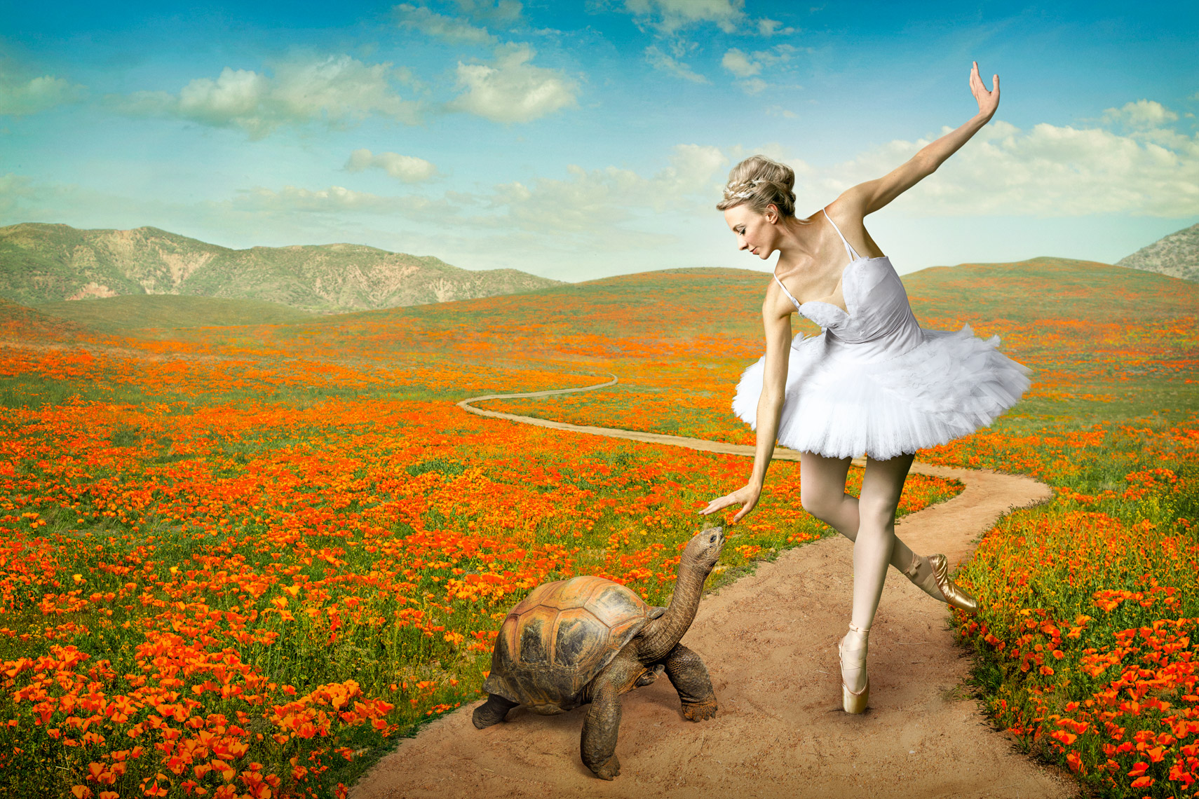 Ballerina Composite - photographer Chris Crisman