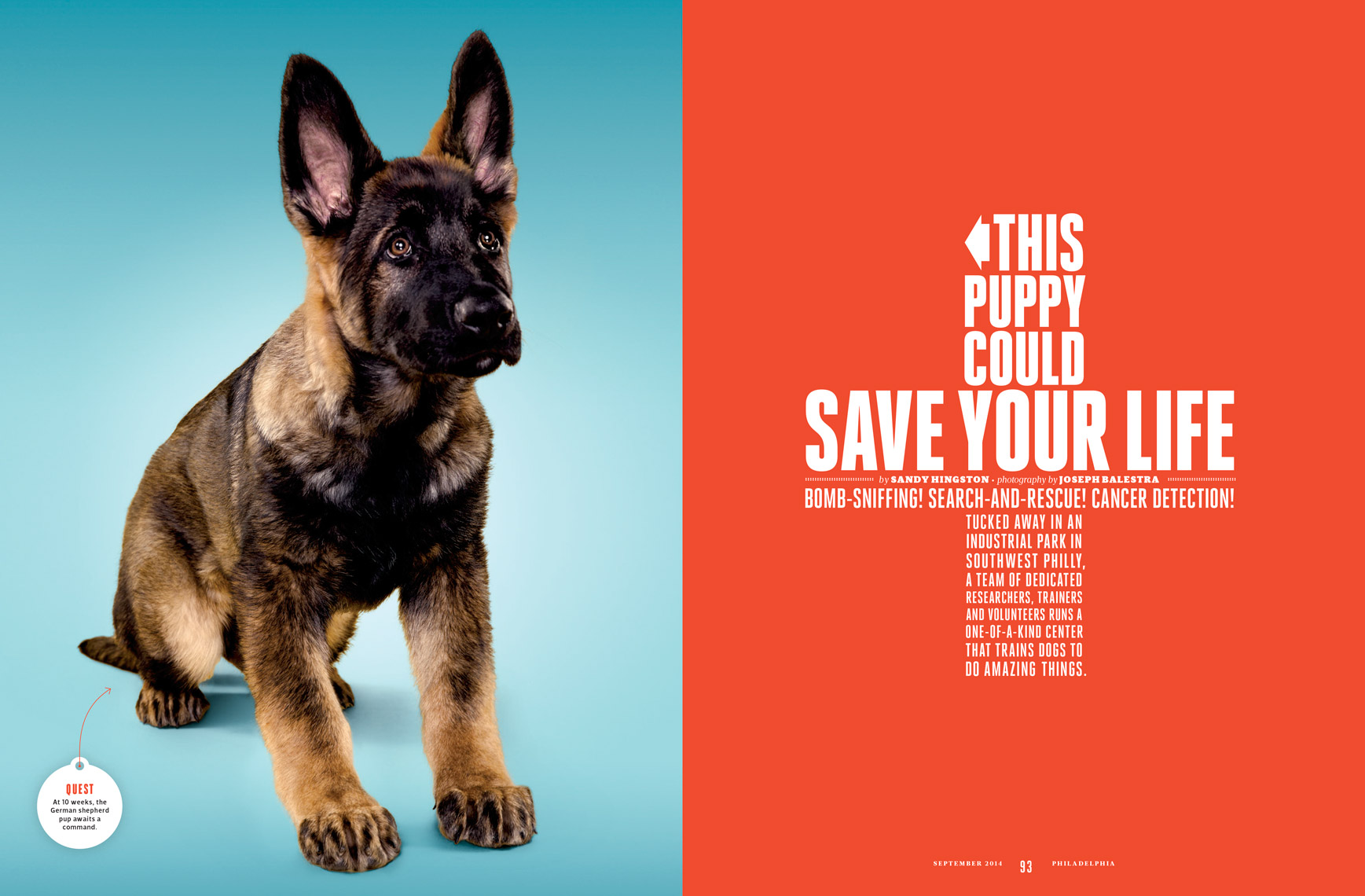 Philadelphia-Magazine---THIS-PUPPY-COULD-SAVE-YOUR-LIFE-Feature---Spread-1---September-2014---photographer-Neal-Santos