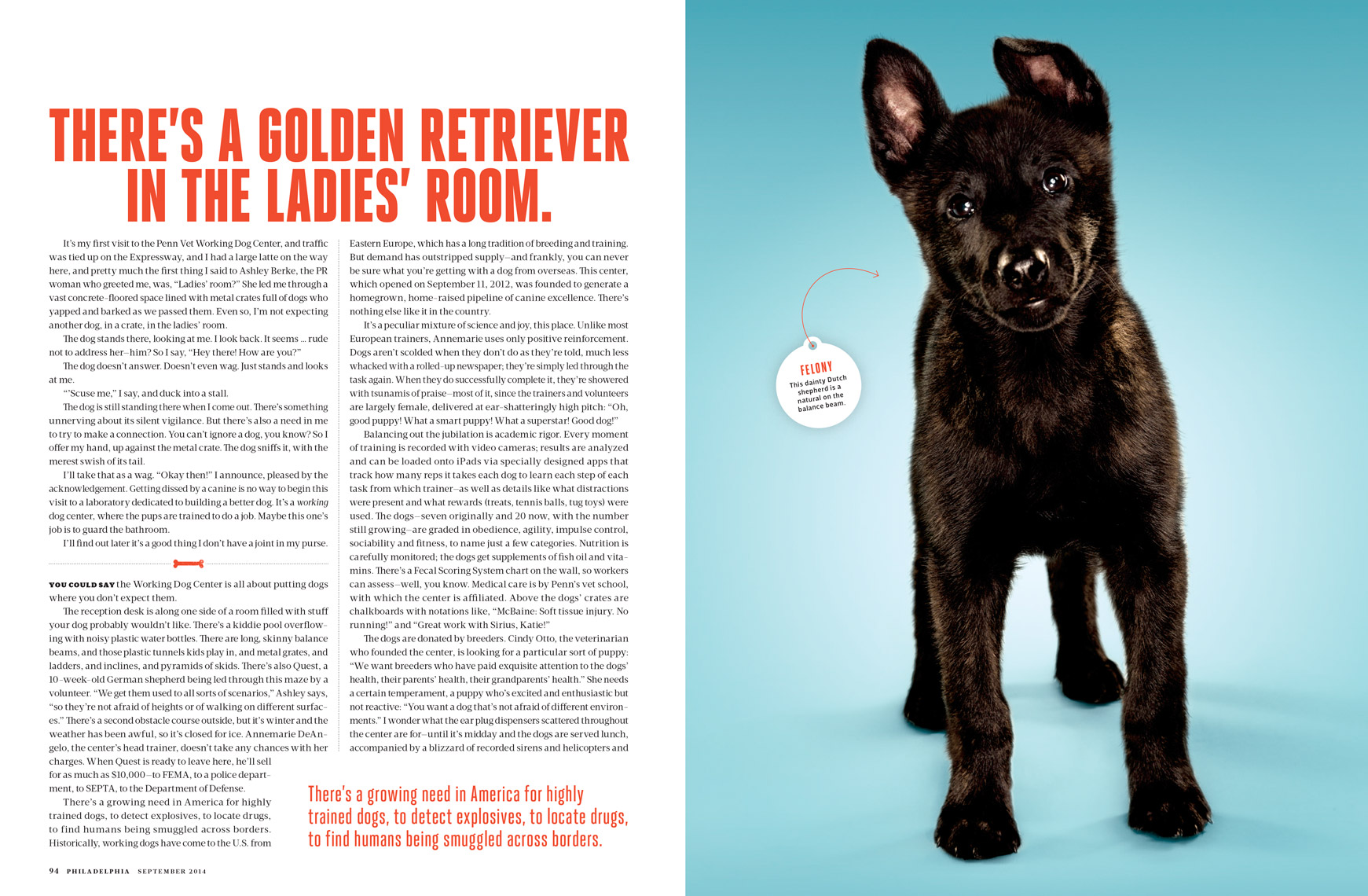 Philadelphia-Magazine---THIS-PUPPY-COULD-SAVE-YOUR-LIFE-Feature---Spread-2---September-2014---photographer-Joseph-Balestra