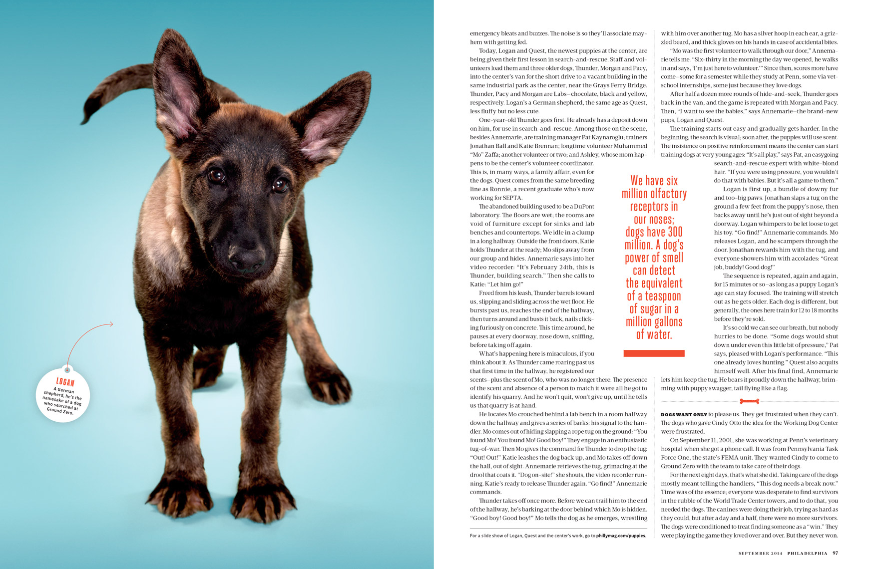 Philadelphia-Magazine---THIS-PUPPY-COULD-SAVE-YOUR-LIFE-Feature---Spread-3---September-2014---photographer-Joseph-Balestra.tif