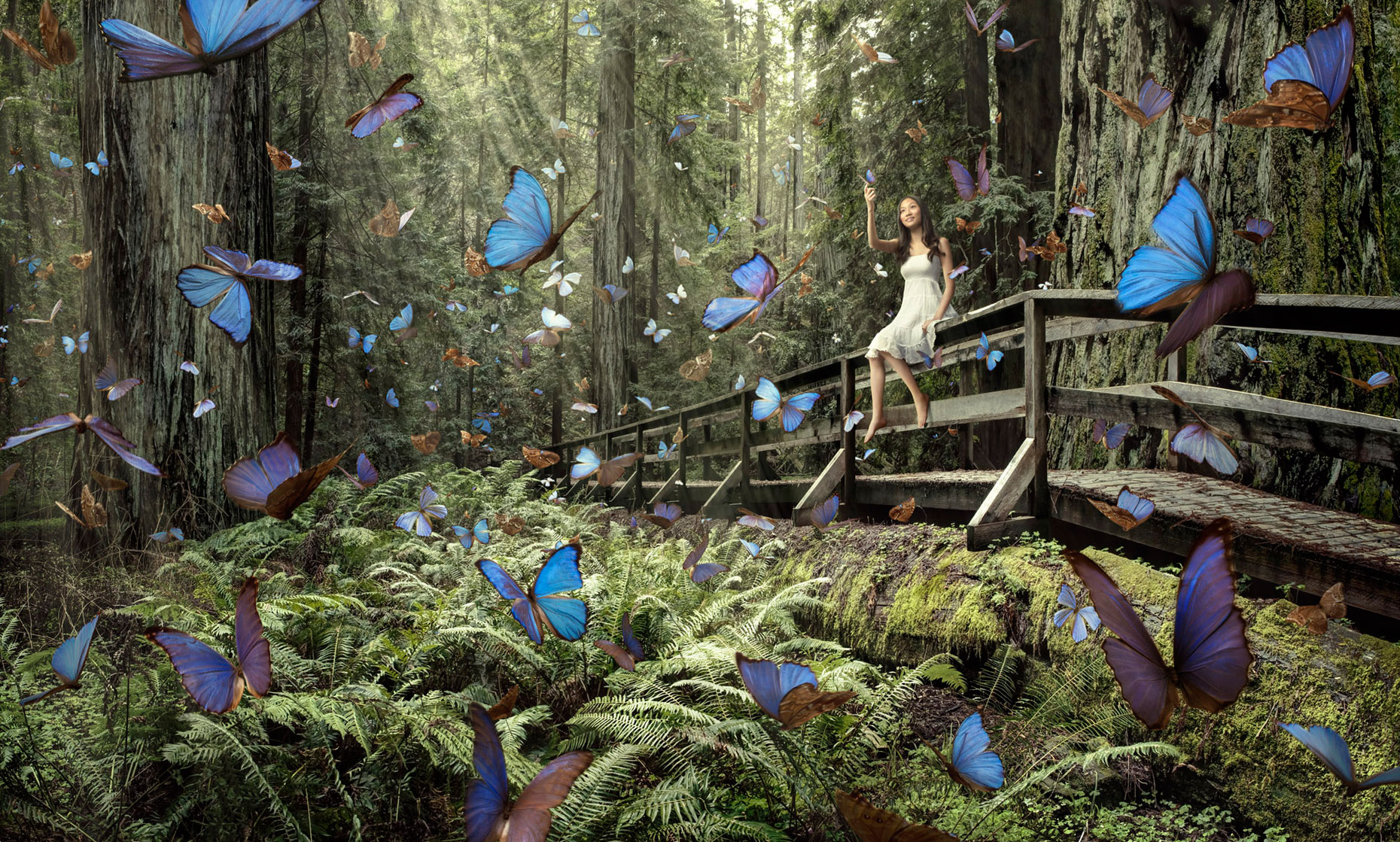 Butterfly Girl - Compositing adventure